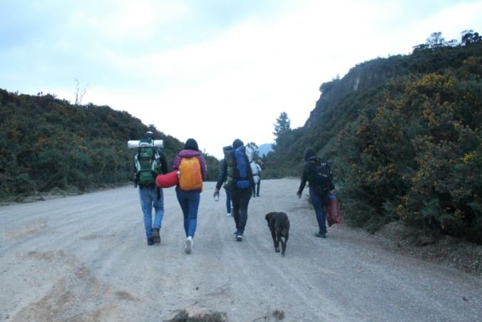 Camino al Neusa.png