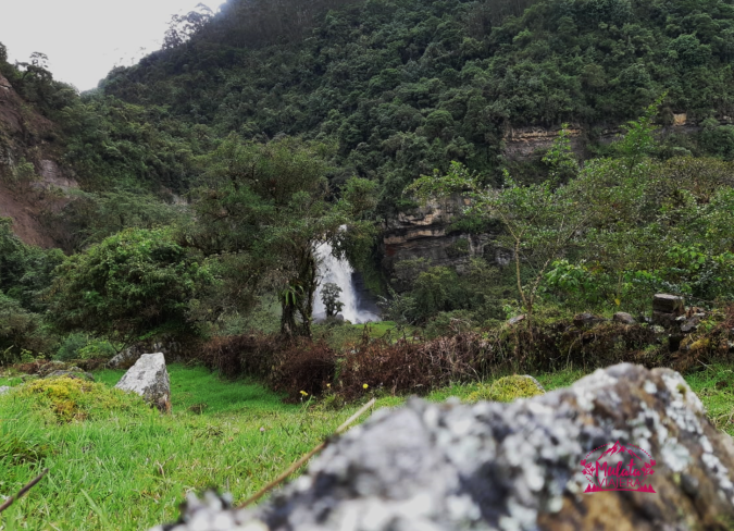 Cascada Nemosten.png